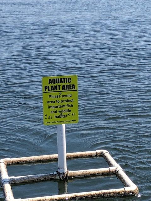 Aquatic Plant Area